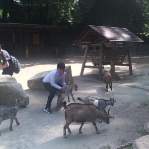 Go-In-Schueler-der-HBS-besuchen-den-Dortmunder-Zoo-_006