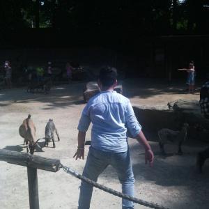 Go-In-Schueler-der-HBS-besuchen-den-Dortmunder-Zoo-_007