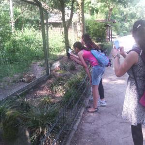 Go-In-Schueler-der-HBS-besuchen-den-Dortmunder-Zoo-_009