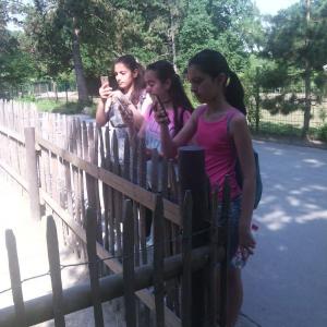 Go-In-Schueler-der-HBS-besuchen-den-Dortmunder-Zoo-_010